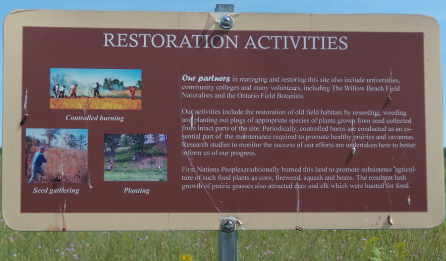 Alderville Restoration-activities