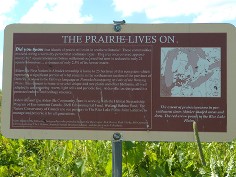 6 Prairie-Lives-On