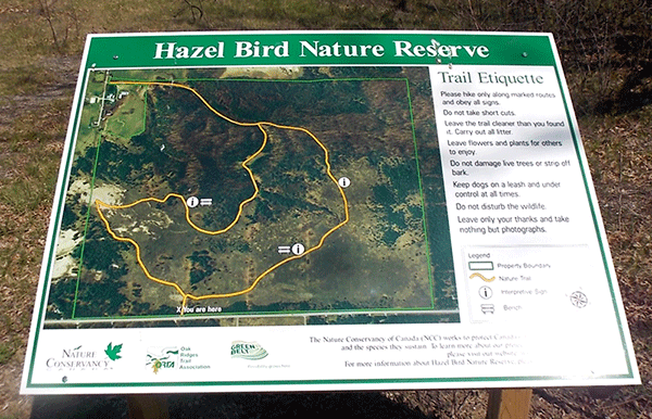 Hazel-Bird-Trail-Map