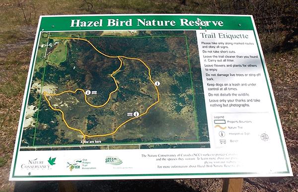 Hazel-Bird-Trail-Map