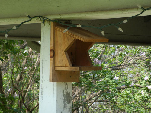 Robin-nesting-shelf